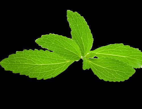 Is stevia een gezonde suikervervanger?