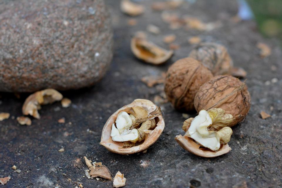 Eet meer onbewerkte noten als gezond en suikervrij tussendoortje